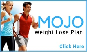 visi weight loss program