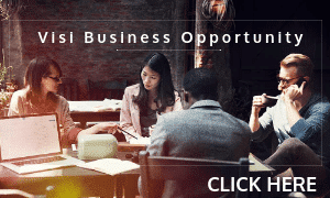 visi global business opportunity